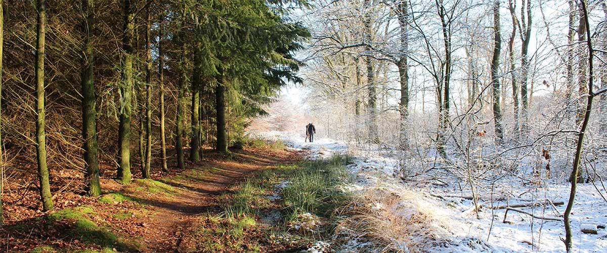 Duelo del clima: Frío vs Calor